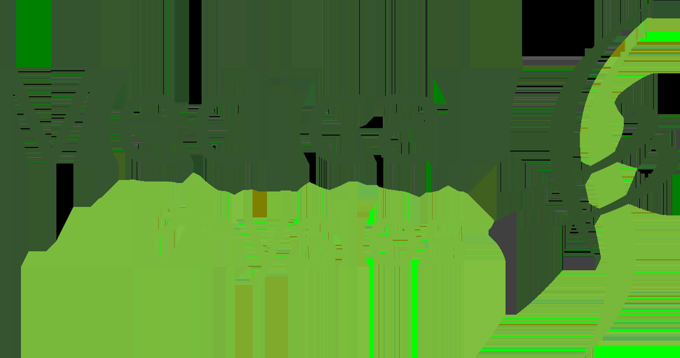 Medical Physios